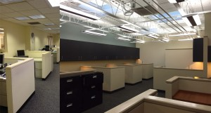 office renovation lighting options